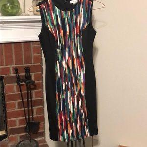 Calvin Klein s8 dress
